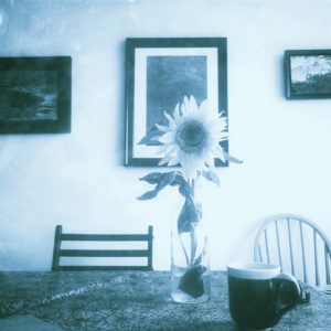 photo of sunflower in glass vase on a table with a blue pottery mug and blue paintings on the wall behind, edited with blue