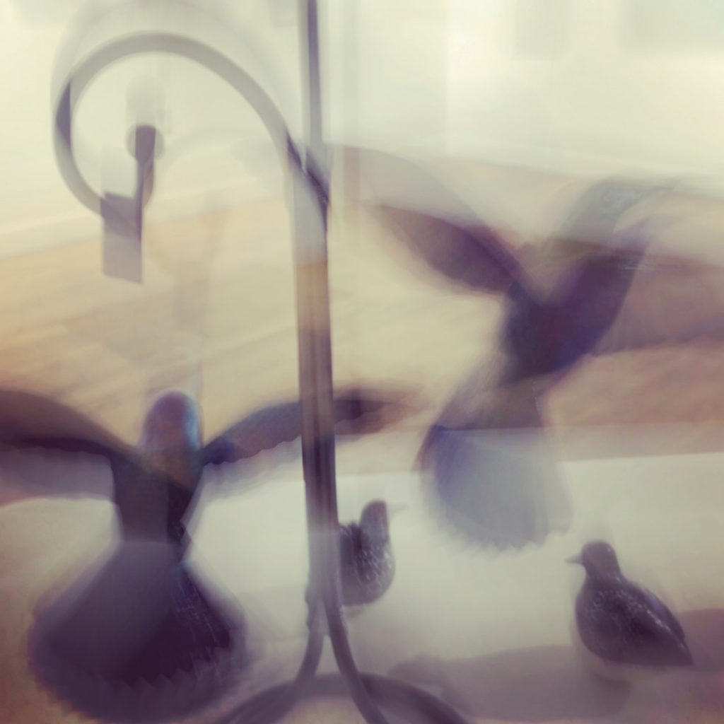 springtime wind, image of hummingbird mobile sculptures blurred in flight